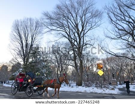 NEW YORK CITY - FEBRUARY 9, 2013: Central Park in the winter, Manhattan, New York City, USA. - stock photo