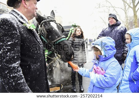 "NEW YORK CITY - MARCH 1 2015: the 15th annual St. Pat's For All parade, an alternative to the Fifth Ave parade, took place in driving snow in Sunnyside, Queens. Feeding carriage horse ""Sampson"""
