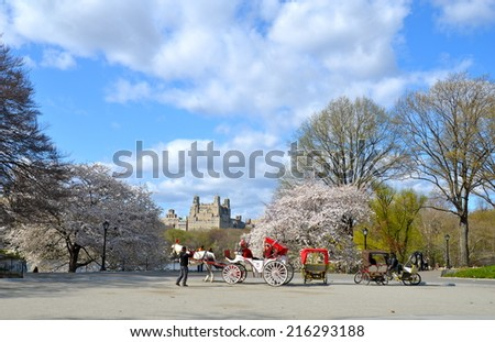 NEW YORK CITY - May 10, 2014: Central Park in the spring, New York City, USA. - stock photo