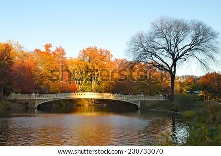 NEW YORK CITY - NOVEMBER 15, 2014: Central Park, Bow bridge in the autumn. Manhattan, New York, USA. - stock photo