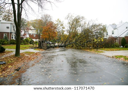 NEW YORK CITY - OCT 29: A fallen tree across a residential street in Jamaica Estates Queens on Oct 28, 2012 during Hurricane Sandy. - stock photo