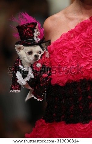 NEW YORK, NY - SEPTEMBER 12: A model walks the runway at the Anthony Rubio fashion show during Spring 2016 New York Fashion Week at Gotham Hall on September 12, 2015 in New York City. - stock photo