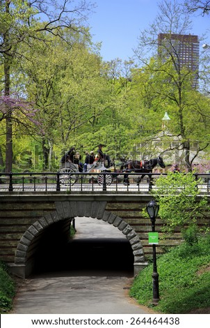 New York, NY, USA - May 6, 2013: Central Park: Carriage in Central Park in Manhattan, New York. - stock photo