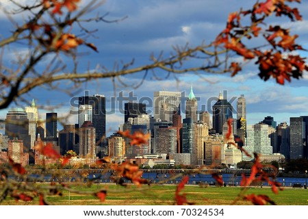 New York through tree - stock photo
