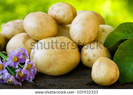 New, young potatoes, fresh and tasty.
