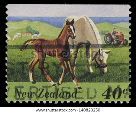 NEW ZEALAND - CIRCA 1995: A stamp printed by New Zealand, shows Horses Pasturing in the Field, circa 1995 - stock photo