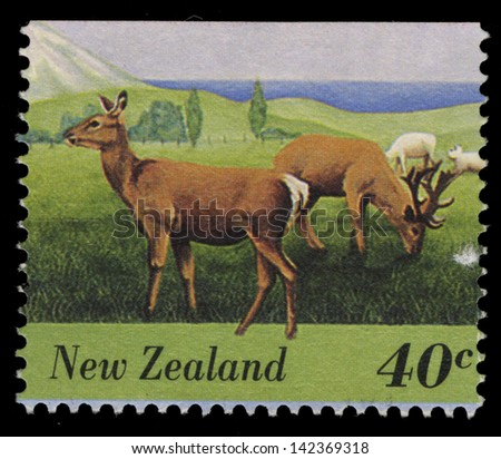 NEW ZEALAND - CIRCA 1995: A stamp printed in New Zealand shows Pasturing Deer, circa 1995 - stock photo