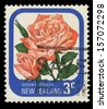 NEW ZEALAND - CIRCA 1975: A stamp printed in New Zealand shows Queen Elizabeth, series devoted to roses, circa 1975 - stock photo