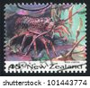 NEW ZEALAND - CIRCA 1993: stamp printed by New Zealand, shows Rock lobster, circa 1993 - stock photo