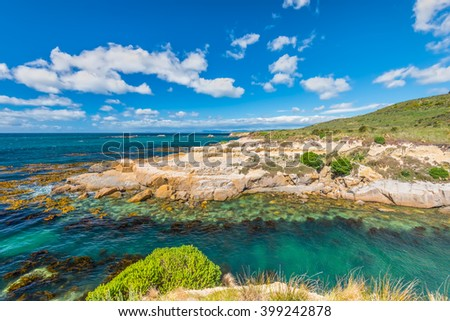 New Zealand colorful coastline landscape with fur seals and birds at Otago Region Southern island New Zealand - full frame and circular polarizing filter - stock photo