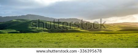 New Zealand Landscape near the Hunua Range at North Island. - stock photo