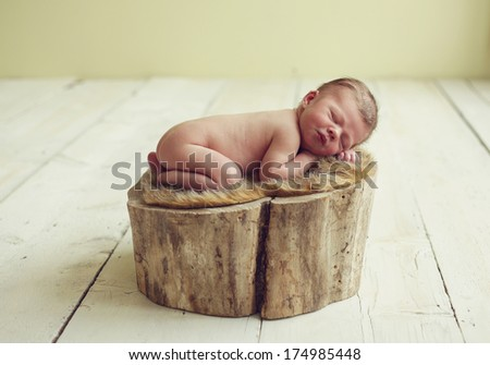 Newborn baby boy on a log - stock photo