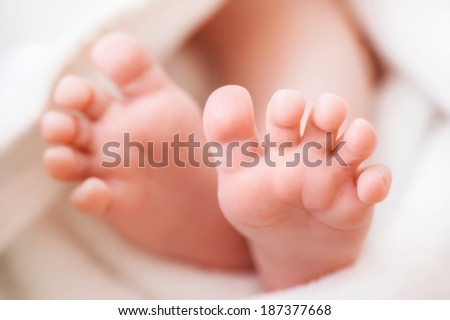 newborn baby feet in a towel - stock photo