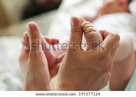 newborn baby feet in female hands - stock photo
