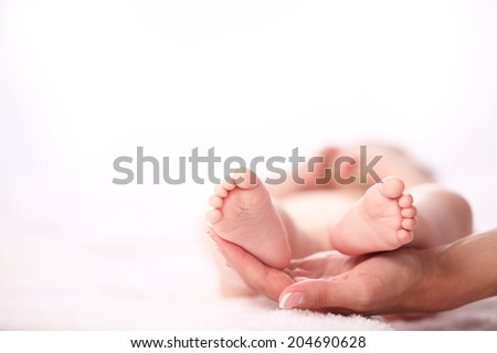 newborn baby feet on female hands  - stock photo