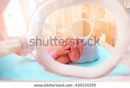 newborn baby lying inside the infant incubator in hospital, sucking fingers - stock photo