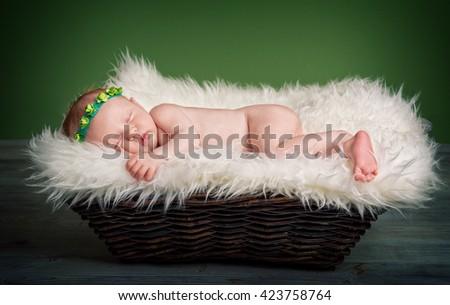 newborn, baby, relax, sleeping, sweet, joy, dreams, leisure, in a basket, lying, sleeping, resting, green background, affectionate, loving, fond, gentle, tender, soft  - stock photo