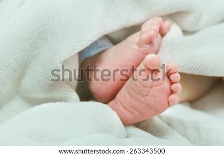 Newborn baby's feet in white blanket - stock photo