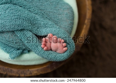 Newborn baby sleeping in a bowl, nap or childcare concept, macro of toes feet - stock photo