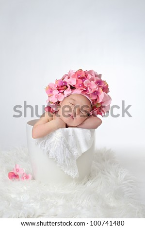 Newborn baby sleeping in a flower pot - stock photo