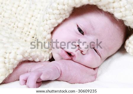 Newborn Baby taken closeup 16 days old - stock photo