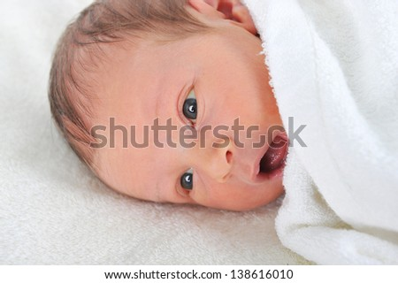 newborn baby wrapped in white blanket