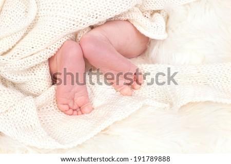 Newborn feet on a white blanket - stock photo