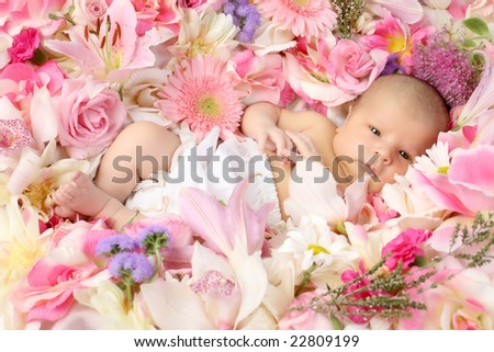 Newborn on bed of Flowers - stock photo