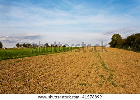 newly ploughed fields with beautiful blue sky at the horizon