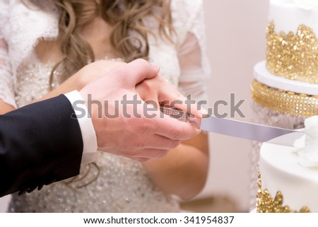 Newlywed couple cutting their wedding cake together.