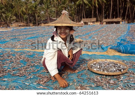 NGAPALI, MYANMAR - OCT 15 : Burmese women in traditional dress sorts dried fish on Oct 15,2010 in Ngapali, Myanmar. The fishing season goes from October to May and the fish is used for fish sauce.