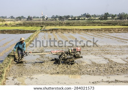 NIAUNGSHWE, MYANMAR - FEBRUARY 2, 2015: A farmer at the bank of the famous lake Inle, Myanmar. is plowing his rice field wit a motor plow.
