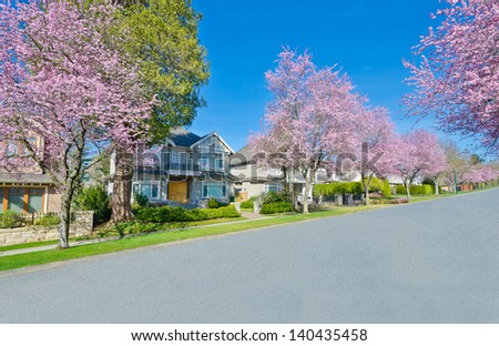 Nice and comfortable great neighborhood. A homes in suburbs at spring, cherry blossom time. Vancouver, Canada. - stock photo