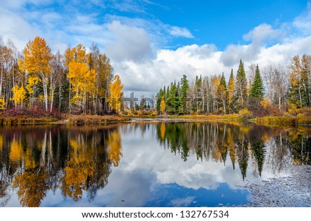Nice autumn landscape with forest lake - stock photo