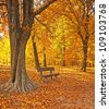 Nice autumnal scene with trees - stock photo