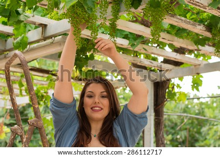 Nice, beautiful caucasian girl in the vineyard, on a rusty ladder.