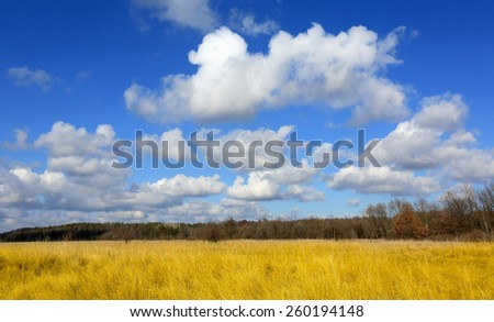 Nice clouds over meadow with dry grass - stock photo