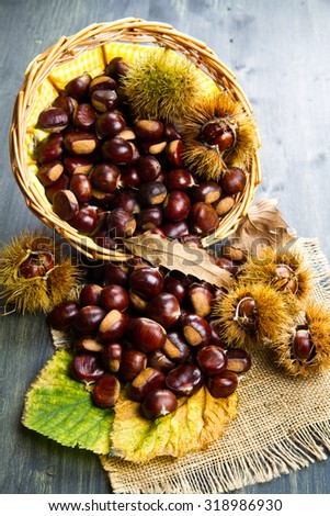 nice edible chestnuts - stock photo