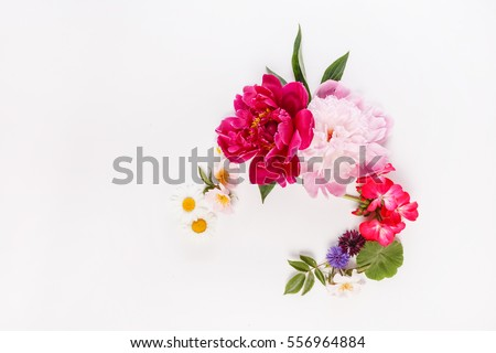 nice flowers stock photo   shutterstock, Beautiful flower