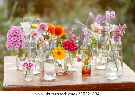 nice flowers in the bottles - stock photo