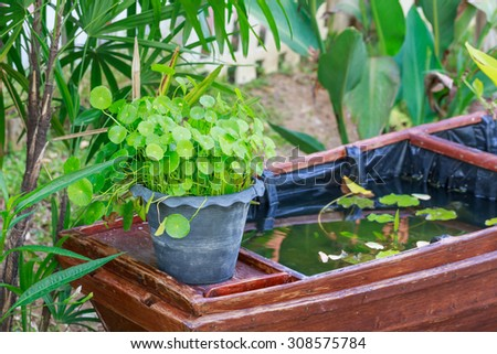 nice green tree in garden and little pool in Thai style