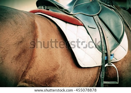 Nice image of a leather saddle seat on a horse back - stock photo