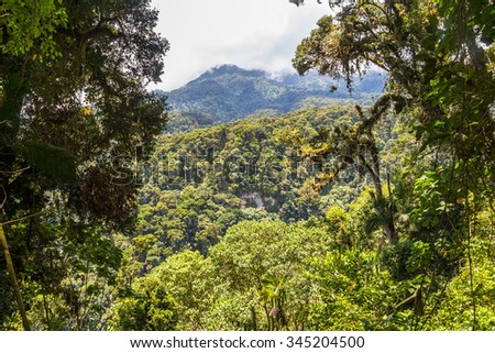 Nice overview of the jungle landscape in Panama - stock photo