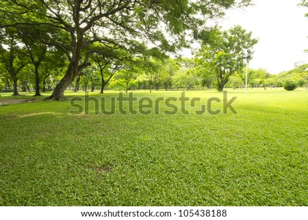 Nice park in the city with trees and grass - stock photo