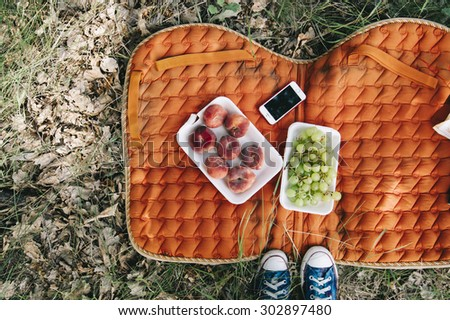 Nice picnic outdoors on an orange saddlecloth. Nice picnic outdoors on an orange saddlecloth. Grapes, donut (saturn) peaches and a smartphone, top view - stock photo