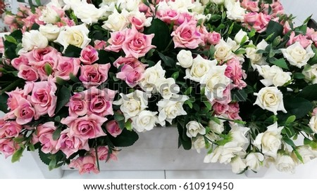 Nice pink and white rose artificial flowers background,home decor.