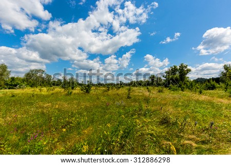 nice summer landscape with meadow and clouds in sky