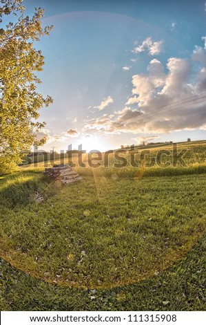 Nice sunset on a field of flowers - stock photo
