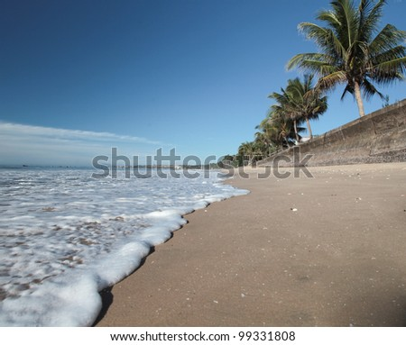 Nice view of palm trees on the beach. Sand, blue sky and the ocean