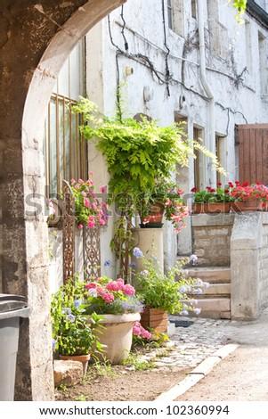 nice yard with flowers - stock photo